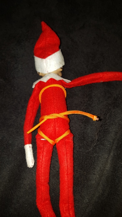 Elf Safety Harness